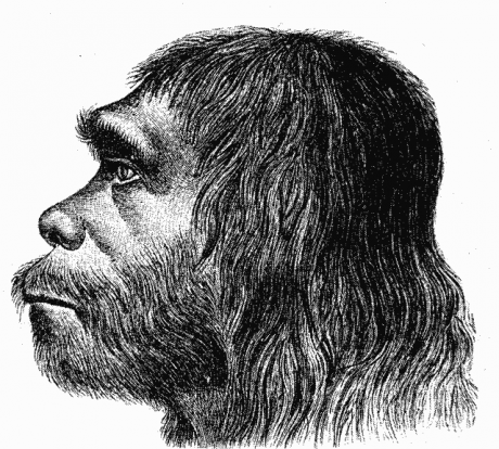 Neanderthals+and+humans+coexist