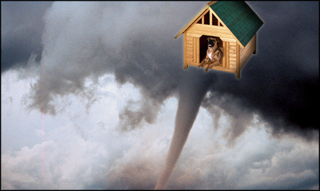 Wizard Of Oz Flying House Weird Things » Fl...