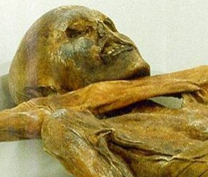 _Iceman_ mummy holds world_s oldest blood cells - Technology & science - Science - LiveScience - msnbc.com.jpg