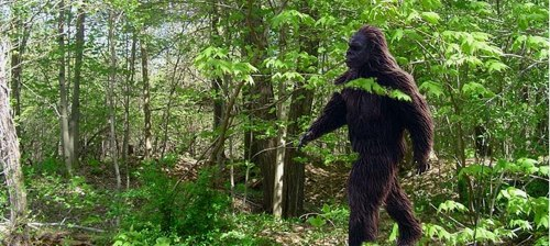 bigfoot texas murder.jpg