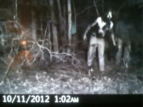 Weird Things 187 Blog Archive 187 Did A Trail Camera Capture A