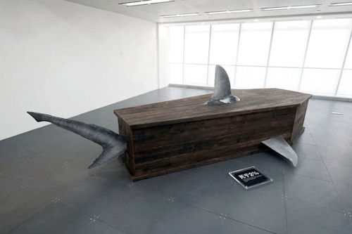 Shark Coffin